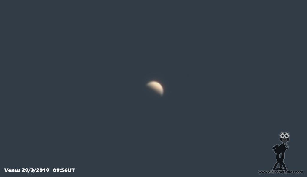 Venus de día en el cielo desde casa